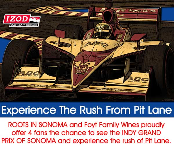 Experience The Rush From Pit Lane